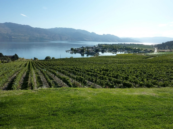 source:Flickr: Kelowna Wine and Cuisine